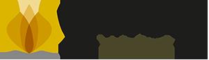 cropped-nvx-logo-univeda-1.png